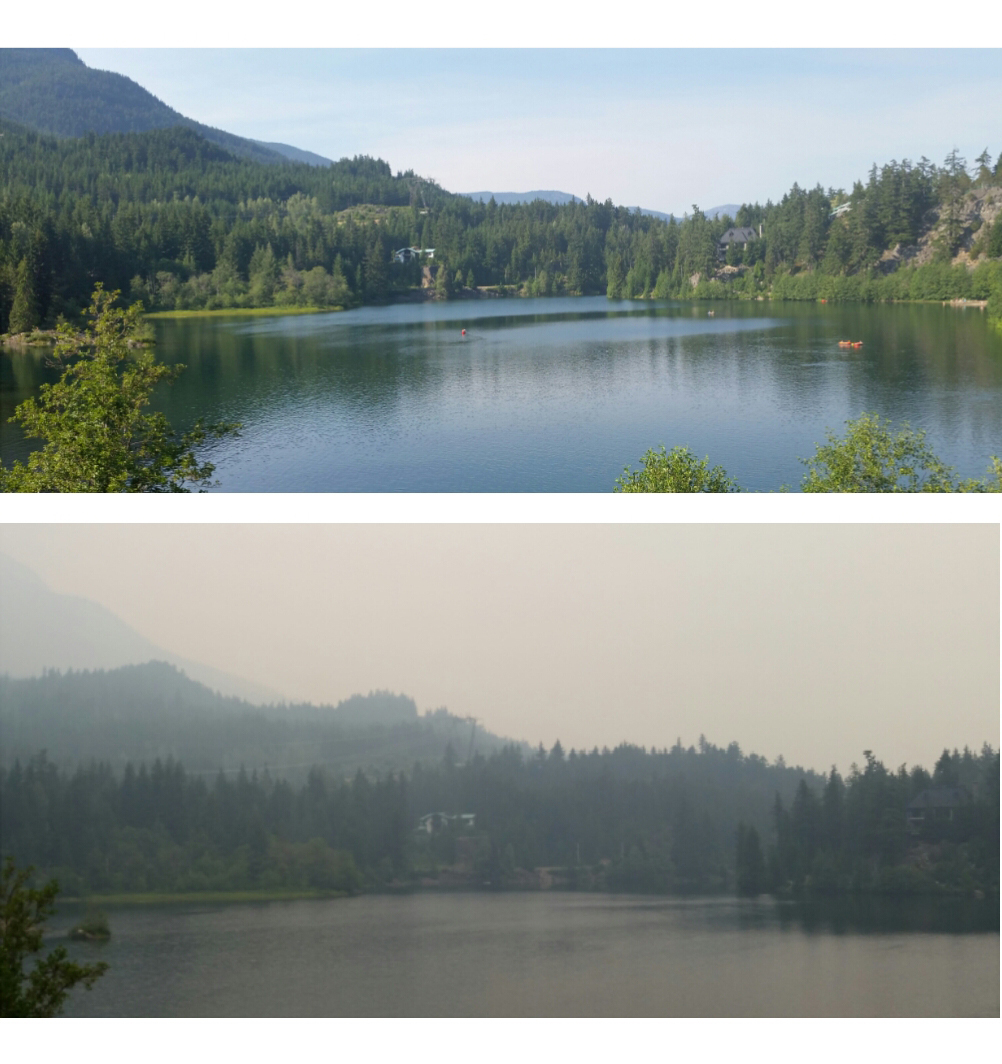 whistler before and after fire
